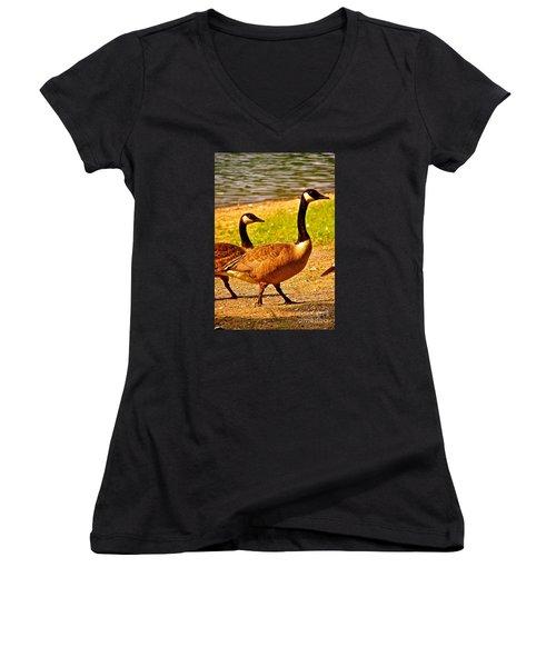 Go Geese Women's V-Neck T-Shirt