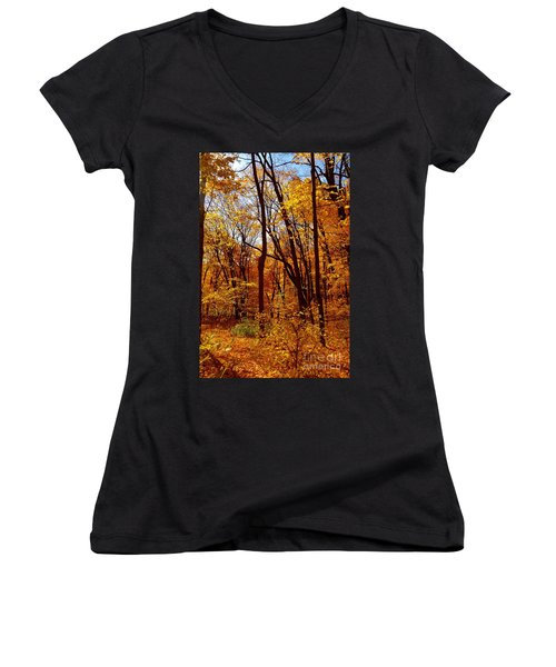 Golden Splendor Women's V-Neck