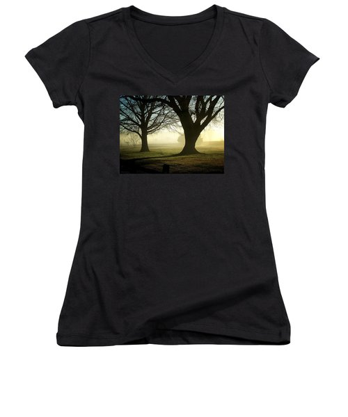 Golden Sunrise Women's V-Neck T-Shirt (Junior Cut) by Greg Simmons
