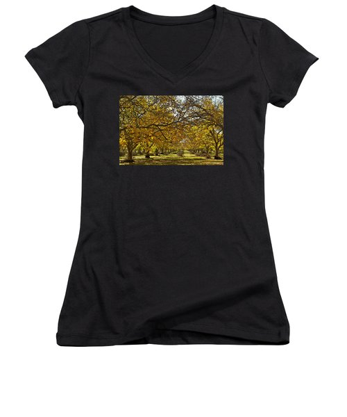 Golden Walnut Orchard Women's V-Neck T-Shirt (Junior Cut) by Michele Myers