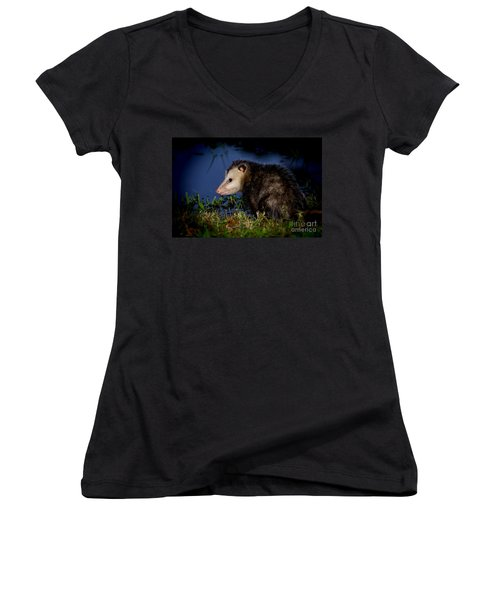 Women's V-Neck T-Shirt (Junior Cut) featuring the photograph Good Night Possum by Olga Hamilton