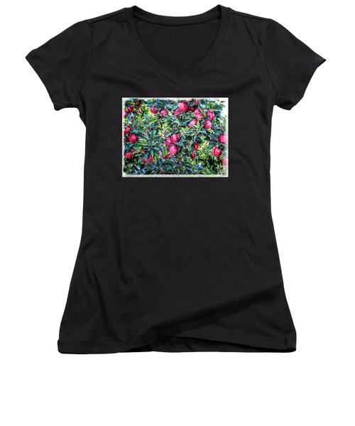 Women's V-Neck featuring the photograph Apple Abundance by Roxy Hurtubise