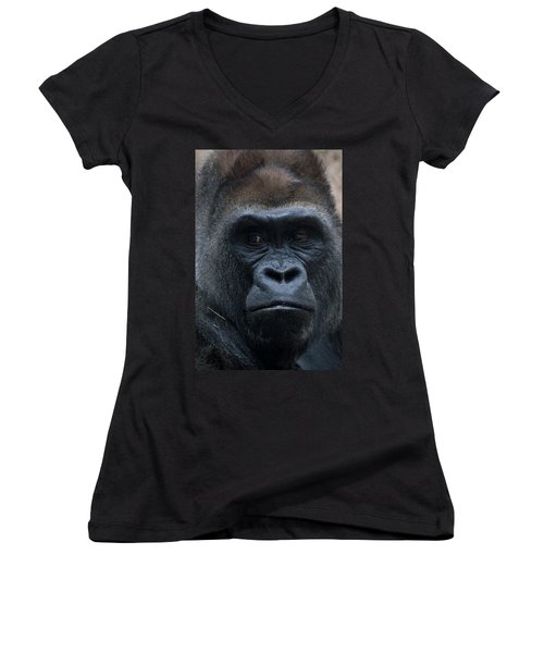 Gorilla Portrait Women's V-Neck (Athletic Fit)