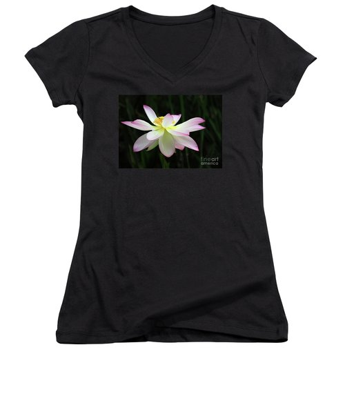 Graceful Lotus Women's V-Neck T-Shirt