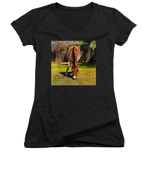 Grazing With An Attitude Women's V-Neck T-Shirt