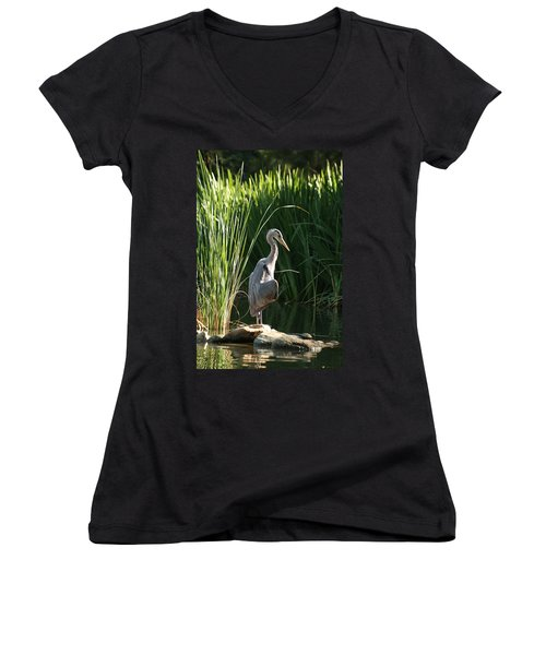 Great Blue Heron Women's V-Neck T-Shirt (Junior Cut)