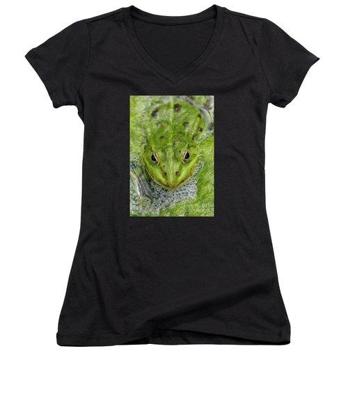 Green Frog Women's V-Neck T-Shirt (Junior Cut) by Matthias Hauser