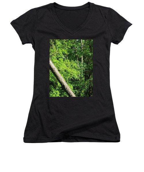 Greenbelt Fall Women's V-Neck T-Shirt (Junior Cut) by David Trotter