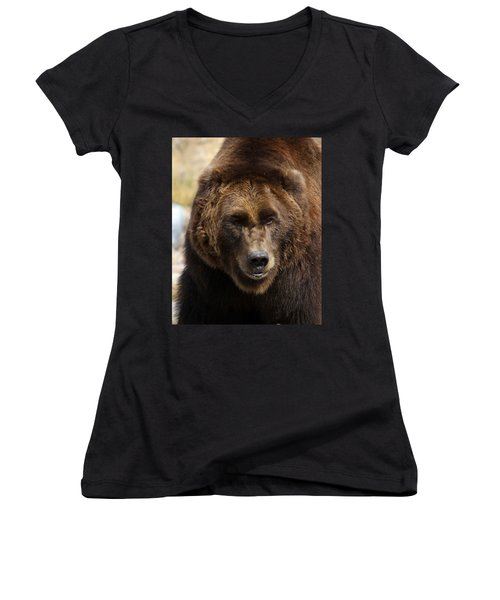 Women's V-Neck T-Shirt (Junior Cut) featuring the photograph Grizzly by Steve McKinzie