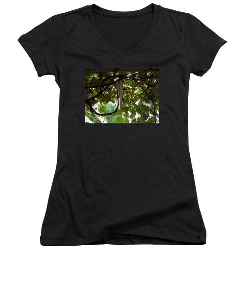 Women's V-Neck T-Shirt (Junior Cut) featuring the photograph Gropius Vine by Joseph Skompski