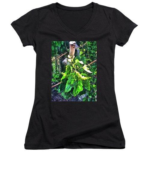 Grow Positively Women's V-Neck T-Shirt