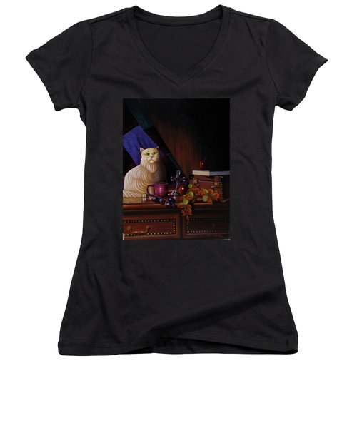 Grumpy Cat Women's V-Neck T-Shirt (Junior Cut) by Gene Gregory