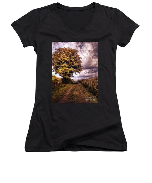Guardian Of The Field Women's V-Neck T-Shirt (Junior Cut) by Daniel Heine