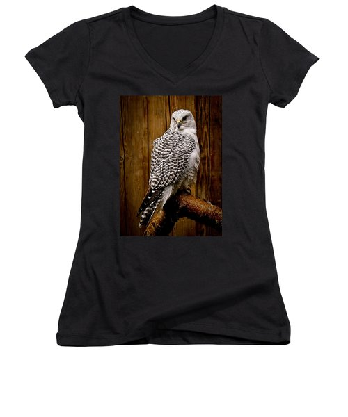Gyrfalcon Perched Women's V-Neck T-Shirt