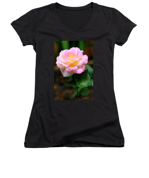 Hand Picked For You Women's V-Neck T-Shirt