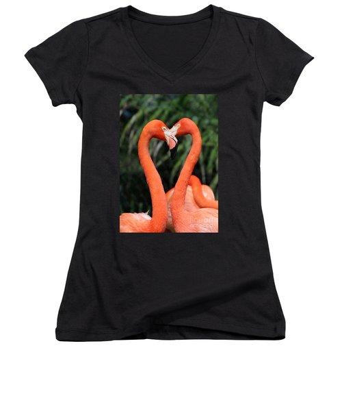 Heart To Heart Flamingo's Women's V-Neck
