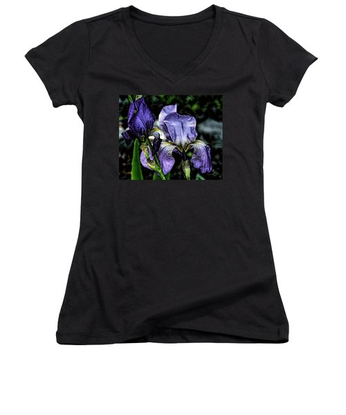 Heirloom Purple Iris Blooms Women's V-Neck T-Shirt