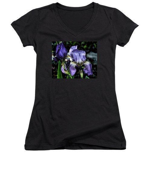 Heirloom Purple Iris Blooms Women's V-Neck