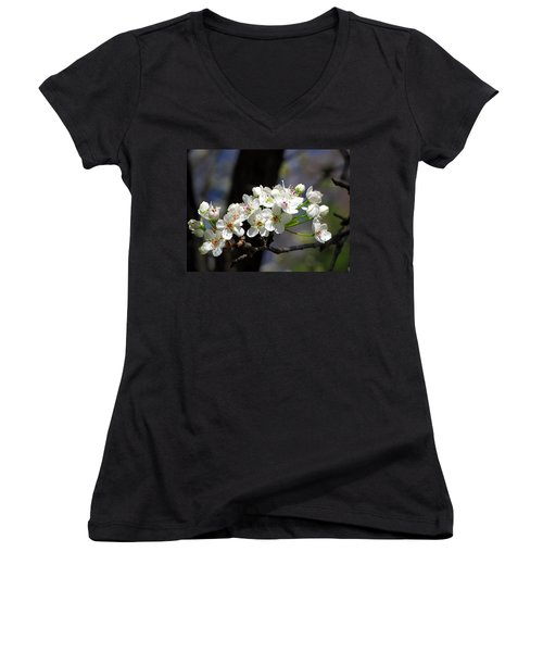 Hello Spring Women's V-Neck T-Shirt (Junior Cut) by Greg Simmons
