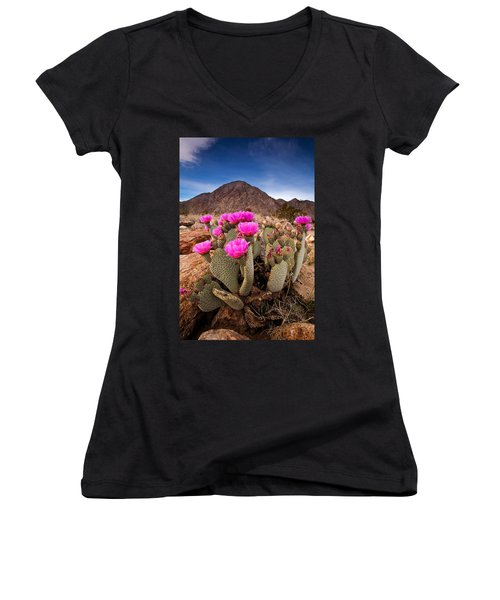 Henderson Canyon Beavertail Women's V-Neck (Athletic Fit)