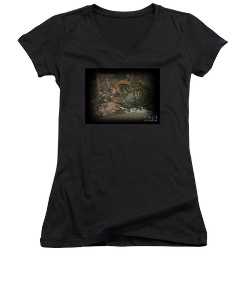 Women's V-Neck T-Shirt (Junior Cut) featuring the photograph Here's Looking At You by Sara  Raber