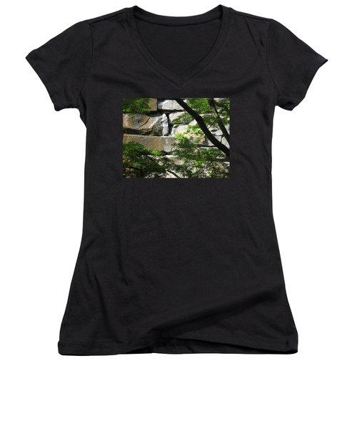 Hidden Waterfall Women's V-Neck T-Shirt (Junior Cut) by David Trotter