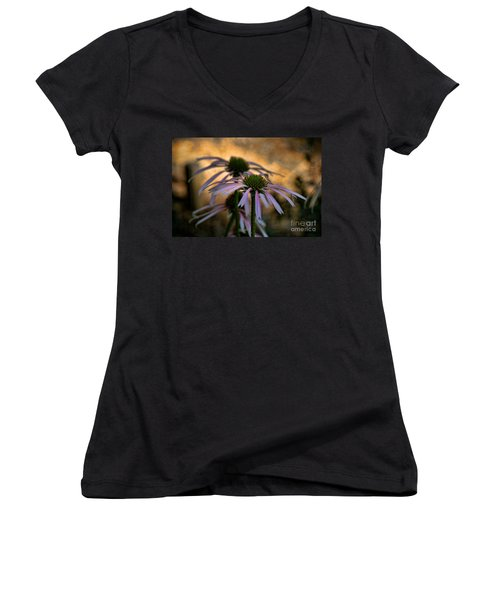 Hiding In The Shadows Women's V-Neck T-Shirt (Junior Cut) by Peggy Hughes