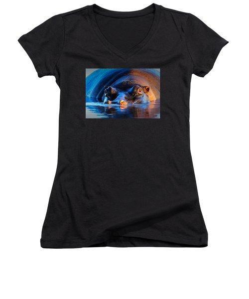 Hippopotamus  At Sunset Women's V-Neck T-Shirt