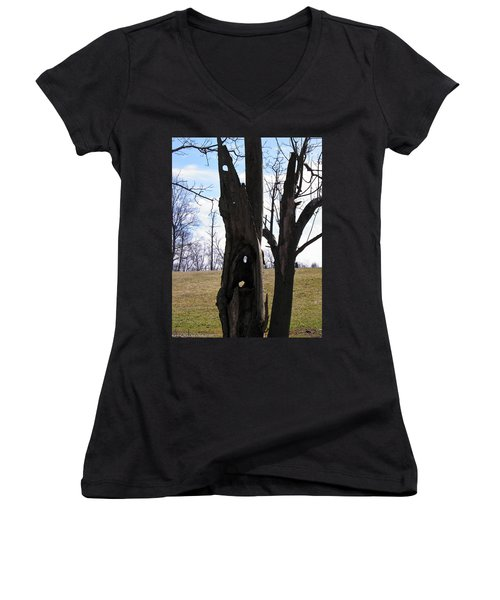 Women's V-Neck T-Shirt (Junior Cut) featuring the photograph Holey Tree Trunk by Nick Kirby