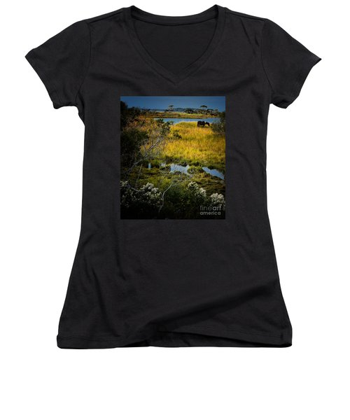 Home On The Range Women's V-Neck T-Shirt