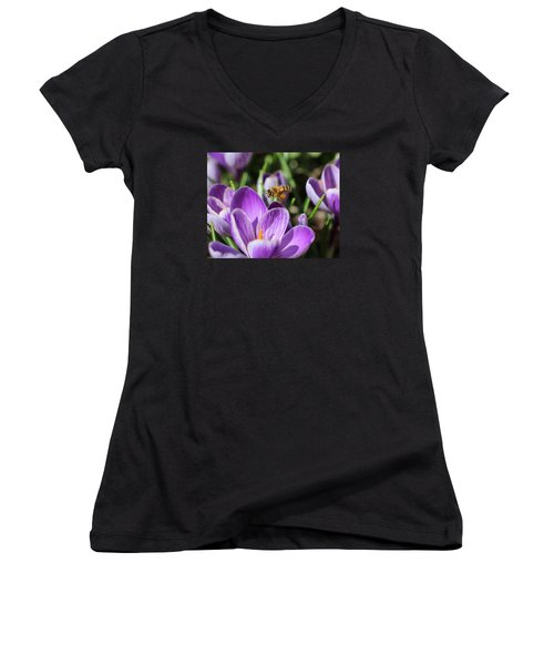 Honeybee Flying Over Crocus Women's V-Neck T-Shirt (Junior Cut) by Lucinda VanVleck