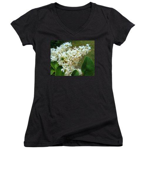 Women's V-Neck T-Shirt (Junior Cut) featuring the photograph Honeysuckle #1 by Robert ONeil