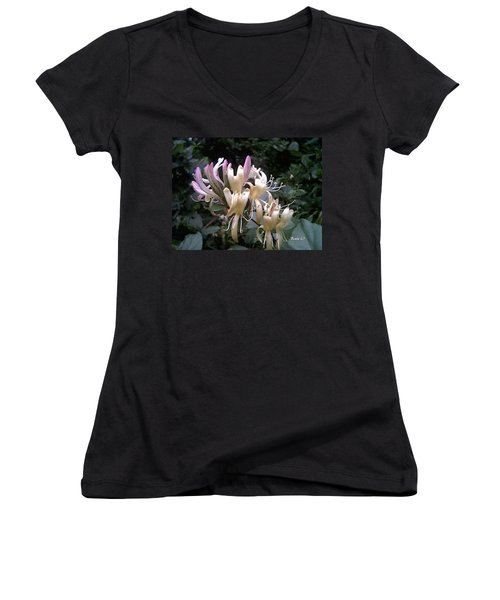 Honeysuckles Women's V-Neck T-Shirt (Junior Cut)