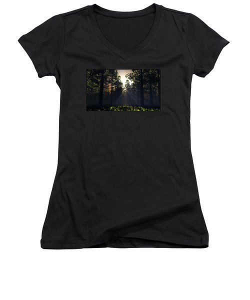 Hope Springs Eternal... Women's V-Neck T-Shirt (Junior Cut) by Tim Fillingim