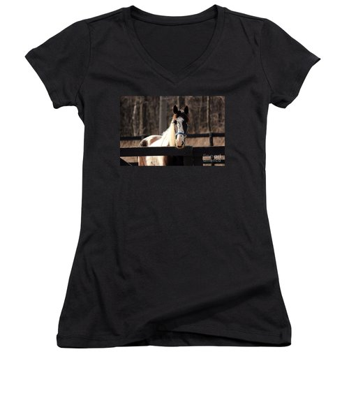 Horse At The Gate Women's V-Neck (Athletic Fit)
