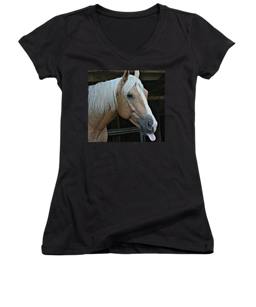 Horse Feathers Women's V-Neck (Athletic Fit)