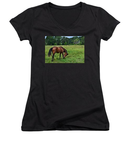 Horse In Holland Michigan Women's V-Neck (Athletic Fit)