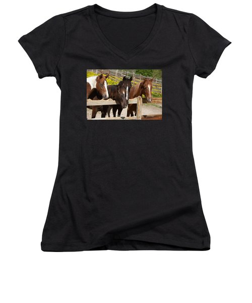 Horses Behind A Fence Women's V-Neck (Athletic Fit)