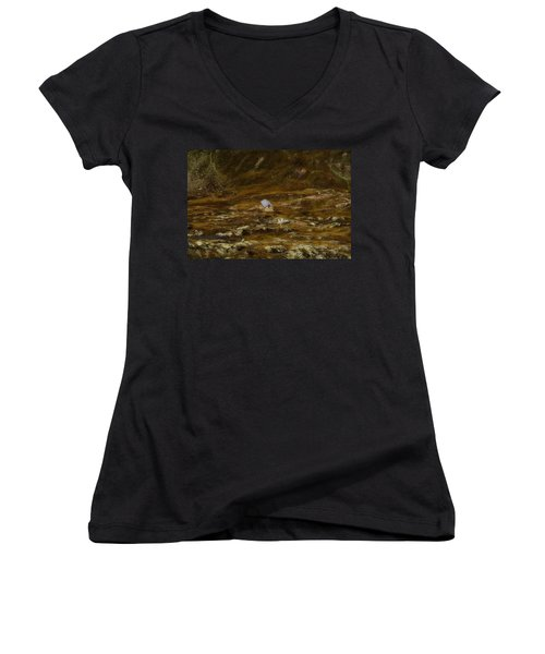 House In The Valley Women's V-Neck (Athletic Fit)