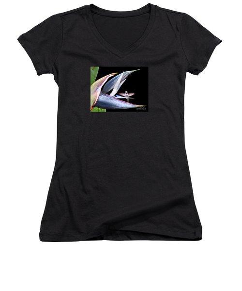 Women's V-Neck T-Shirt (Junior Cut) featuring the photograph Hummingbird Paradise by Jennie Breeze