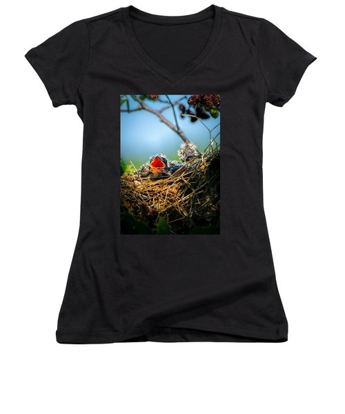 Hungry Tree Swallow Fledgling In Nest Women's V-Neck (Athletic Fit)