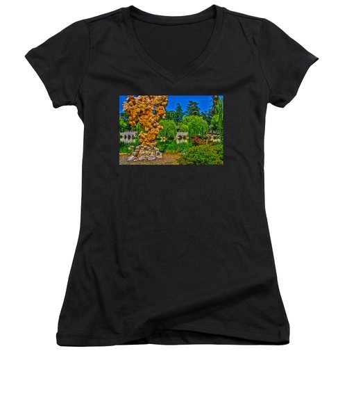 Huntington Gardens Ca Women's V-Neck T-Shirt