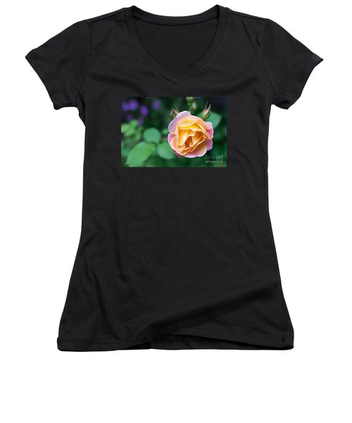 Women's V-Neck T-Shirt (Junior Cut) featuring the photograph Hybrid Tea Rose by Matt Malloy