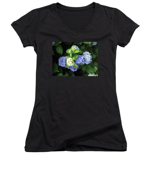 Hydrangea Women's V-Neck (Athletic Fit)