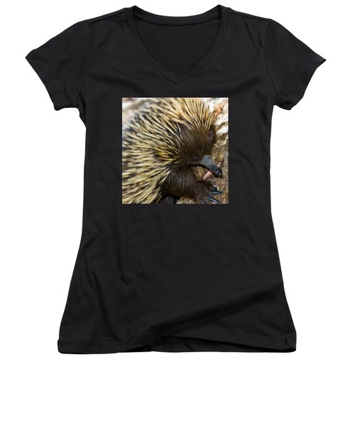 I See Some Ants Women's V-Neck T-Shirt (Junior Cut) by Miroslava Jurcik