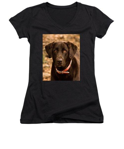 Women's V-Neck T-Shirt (Junior Cut) featuring the photograph I Swear I Didn't Do It by Robert L Jackson
