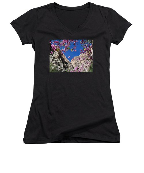 Ice Box Canyon In April Women's V-Neck T-Shirt (Junior Cut) by Alan Socolik