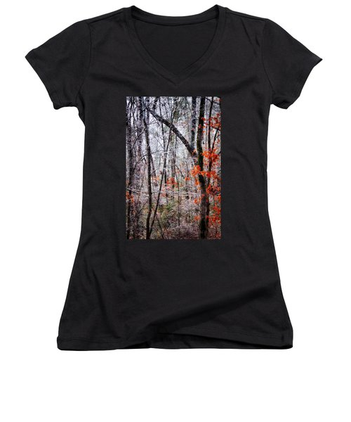 Ice Trees Women's V-Neck
