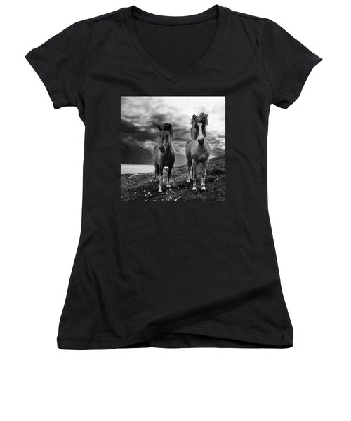 Icelandic Horses Women's V-Neck T-Shirt (Junior Cut) by Frodi Brinks