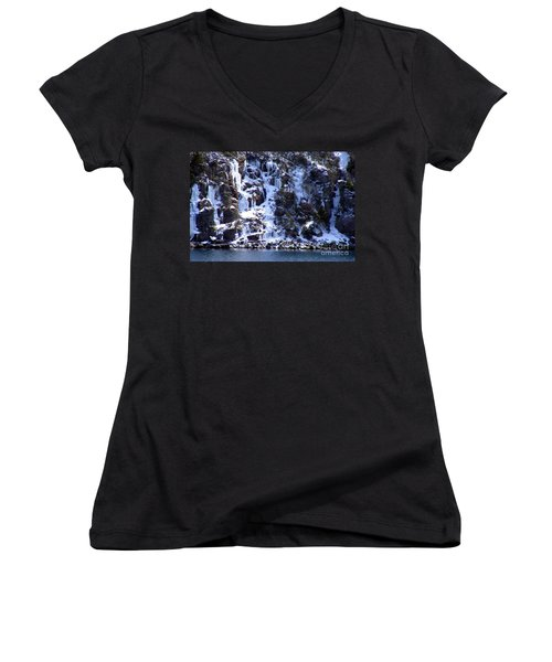 Icicle House Women's V-Neck T-Shirt (Junior Cut) by Barbara Griffin